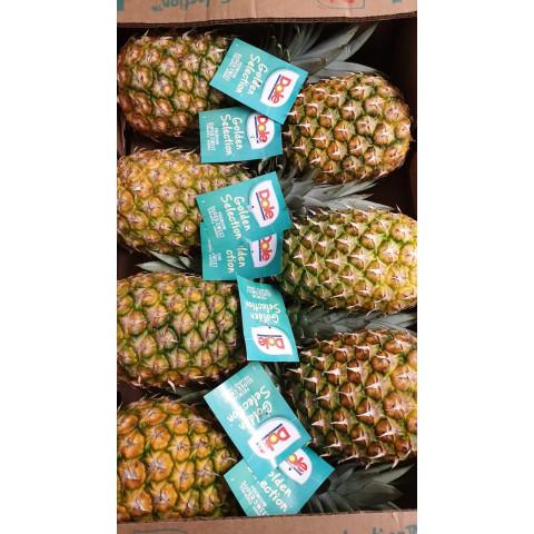 Ananas Gold cal. 7 PQ