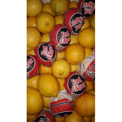 Citrony Španělsko 1 kg