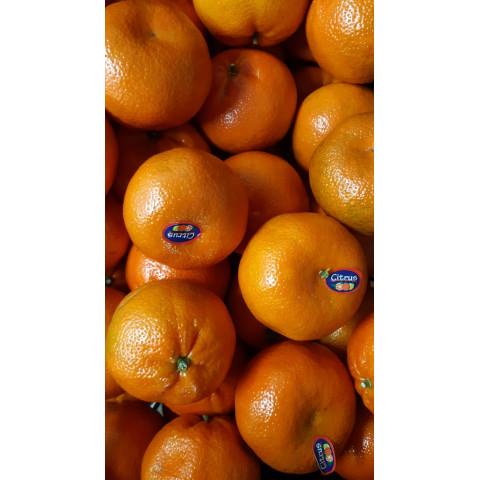Mandarinka Nadarcott velká Maroko