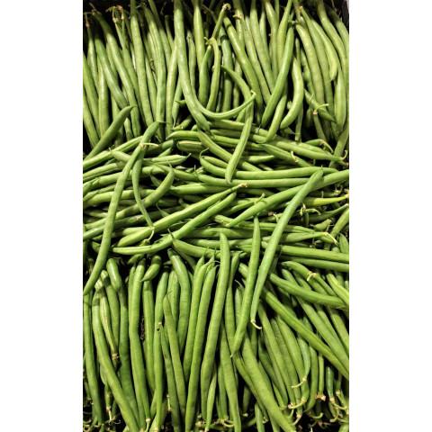 Fazolky zelené, kulaté, tenké  kg Itálie PQ