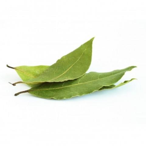 Bobkový list 100 g Itálie