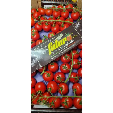 Rajčata cherry červená kul. keřík kg  Itálie PQ