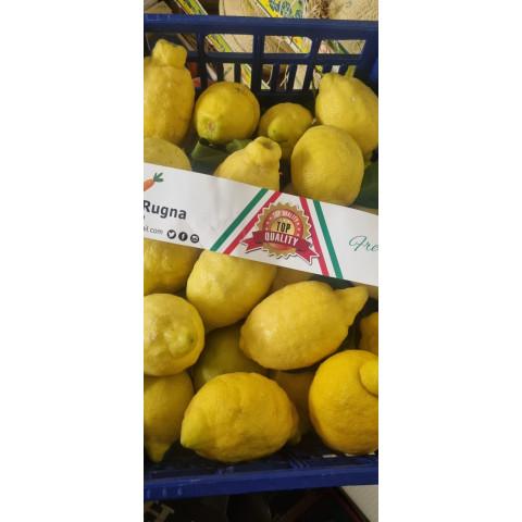 Citrony s listem extra PQ s jedlou slupkou bez chem. oš. cena za kg