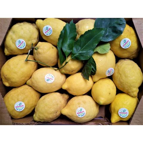 Citrony s listem extra PQ bez chem. oš. kg