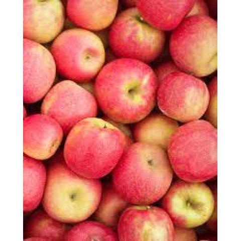 Jablka Cripps Pink / Pink Lady Itálie cena za kg