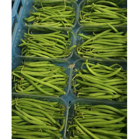 Fazolky zelené CZ kg