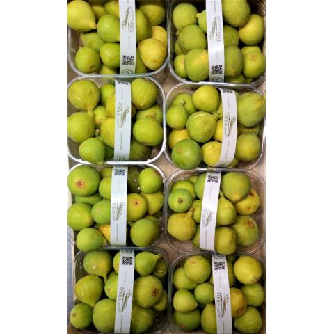 Fíky čerstvé zelené Itálie PQ kg