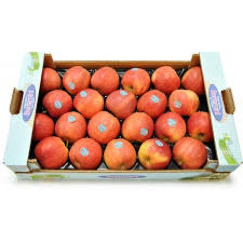 Jablka Royal Gala Itálie PQ kg