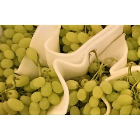 Hrozny bílé semenné Itálie kg