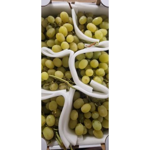 Hrozny bílé semenné Italia PQ kg