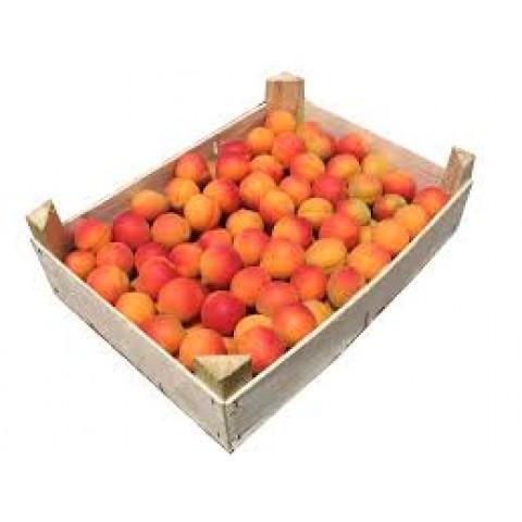 Meruňky Francie kg