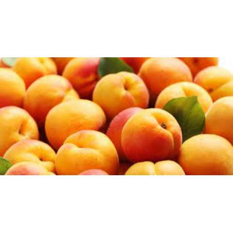 Meruňky Španělsko kg