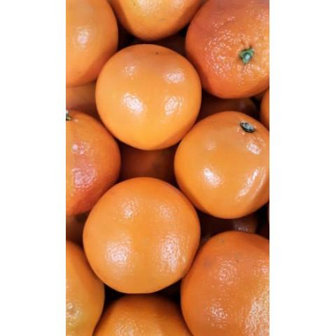 Pomeranče menší Egypt