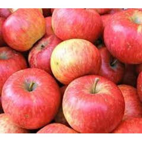 Jablka Rubín kal. 75 - 80 CZ kg