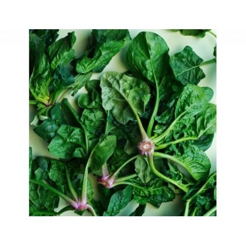 Špenát listový Itálie PQ kg